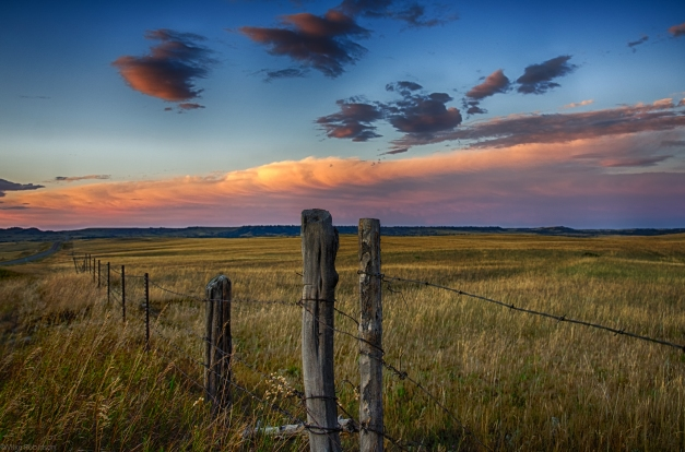 Montana_Roadside_Evening