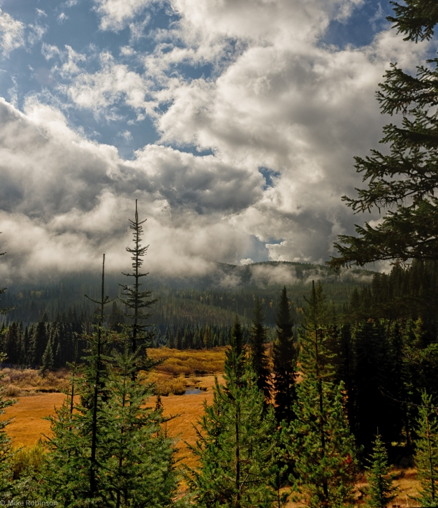 Montana_Mountain_Road_Scene