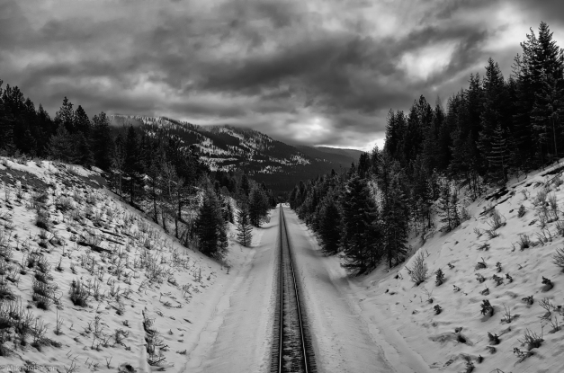 Winter_Tracks_BW