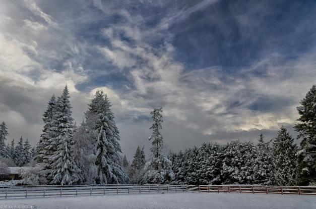 Washington_Winter_Morning