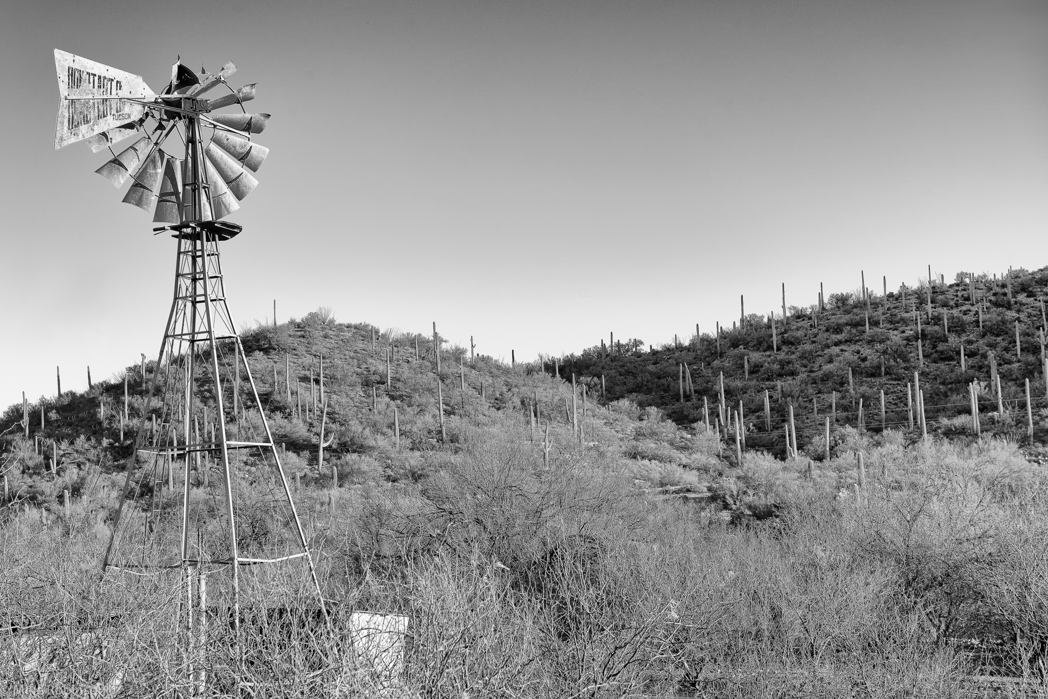 Southern_Arizona_Roadside_BW