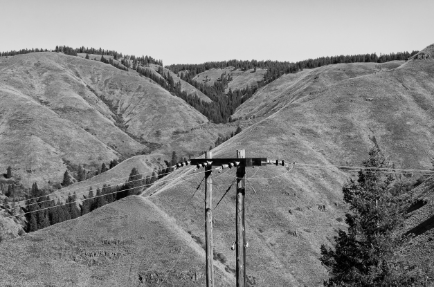 Oregon_Hills_and_Lines