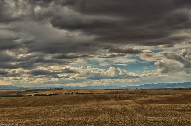 Idaho_Farm_Morning