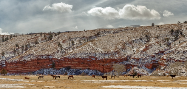 Pano_Wyoming_Horse_Country_2