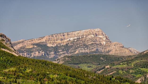 Western_Montana_Morning