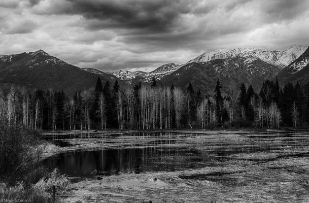 Still_Lake_BW
