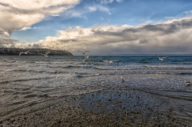 Carkeek_Park_Stormy_Day