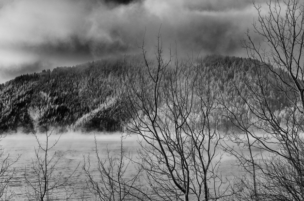 Idaho_Winter_Reservoir_BW