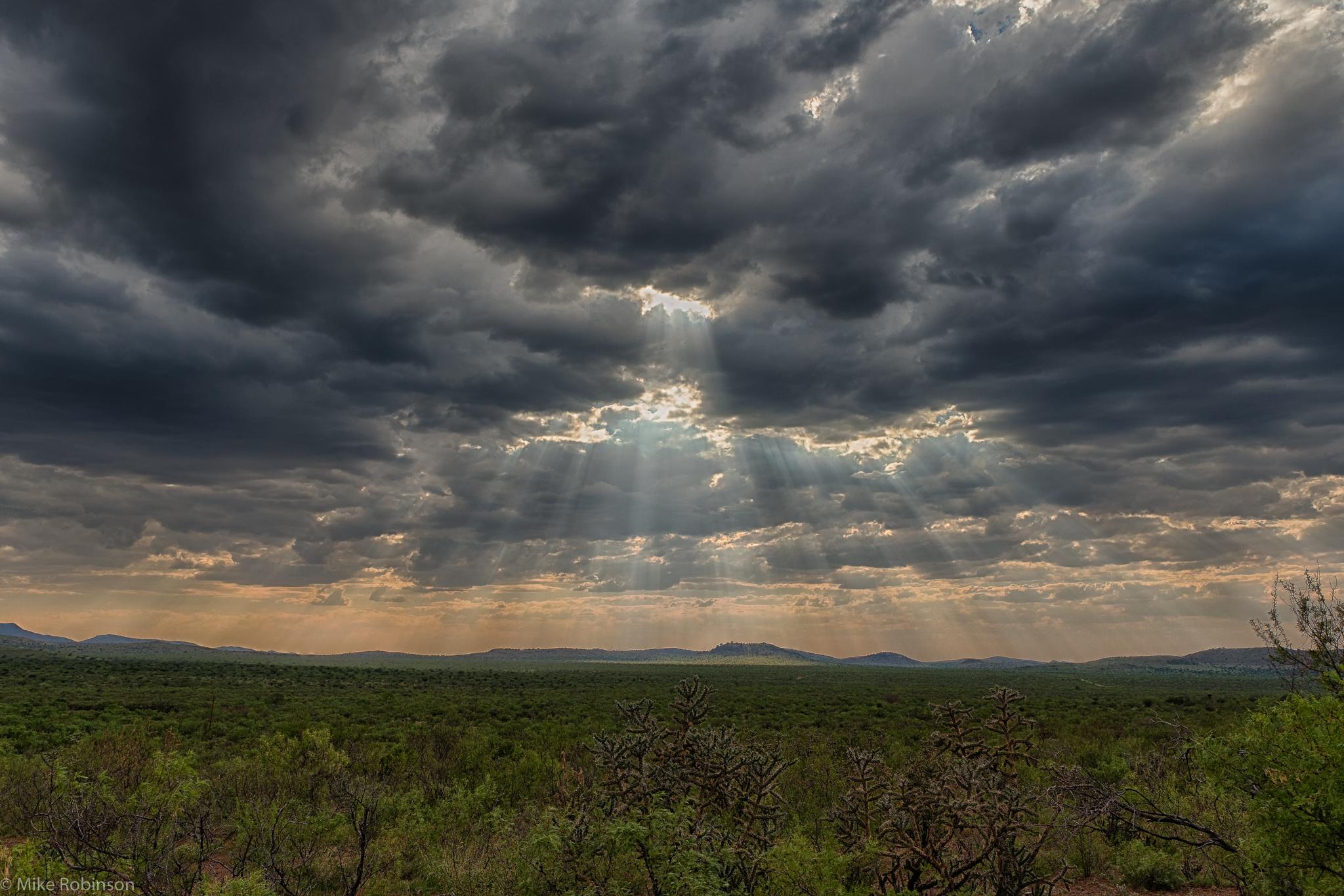 New_Mexico_Sunbreak