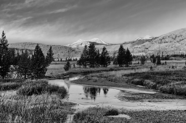 Yellowstone_Stream_2_BW