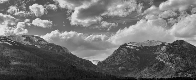 Just_Another_Yellowstone_Afternoon_BW