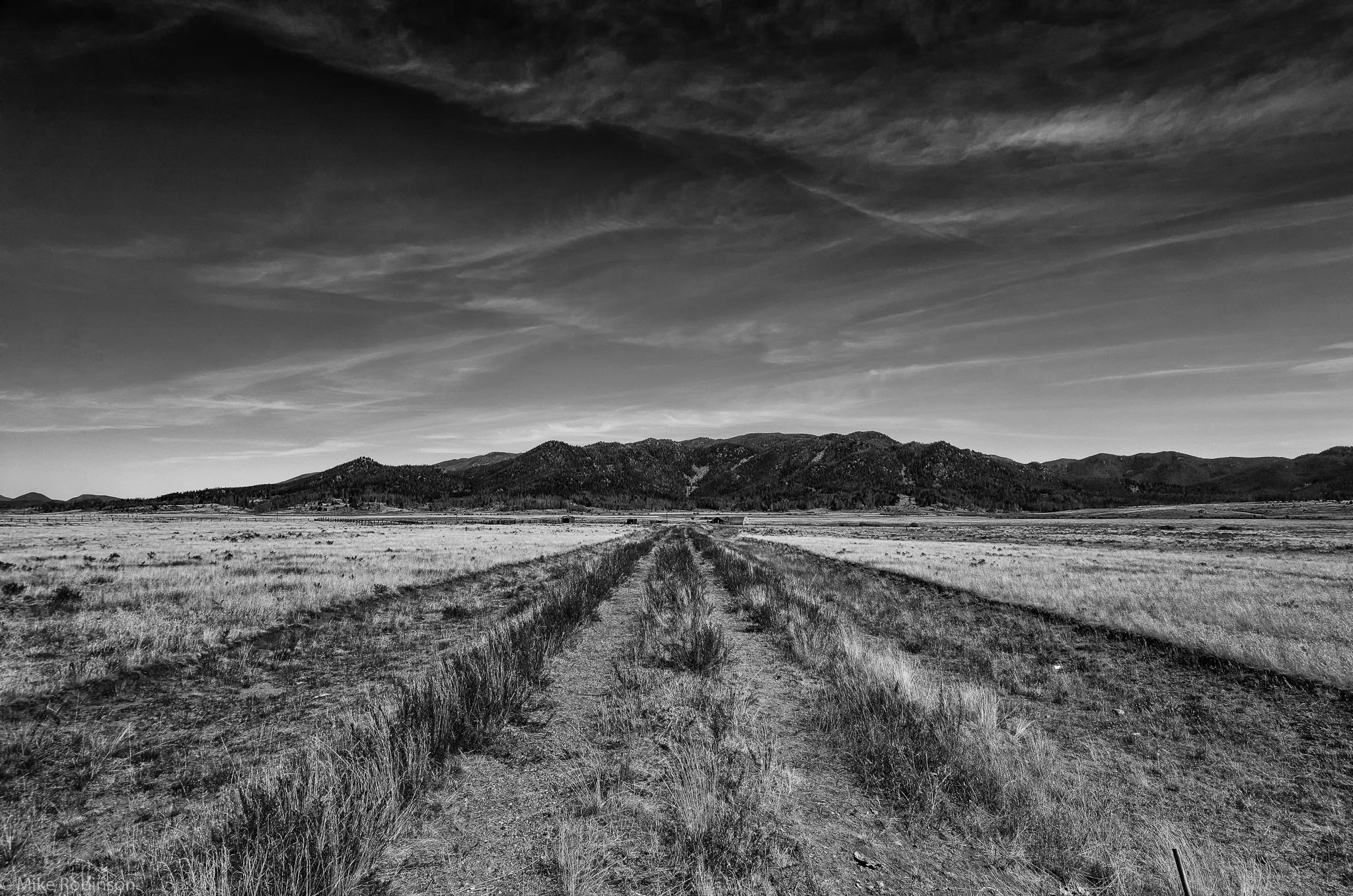 Ranch_Road_BW