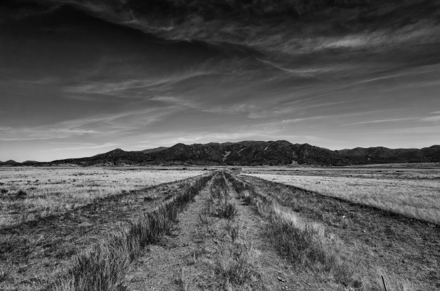 Ranch_Road_BW