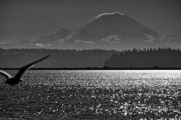 Lake_Washington_Morning_BW
