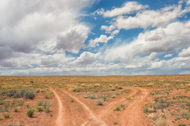 Desert_Dual_Dirt_Roads