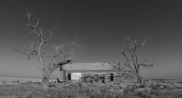Abandoned_House_Memphis_TX_BW