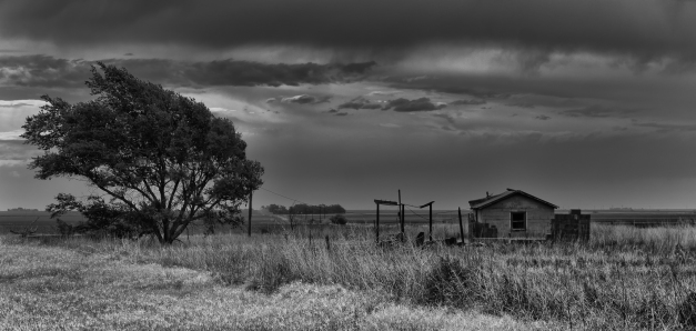 Windswept_West_Texas_BW