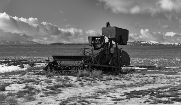 Montana_Old_Harvester_BW