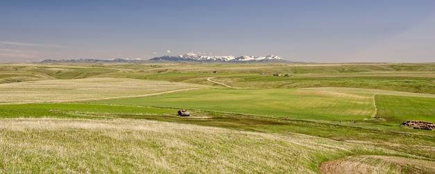 Montana_Fields