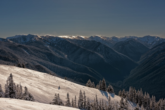 Hurricane_Ridge_2