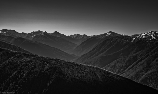 Hurricane_Ridge_BW