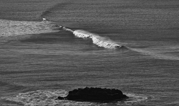 Wave_BW