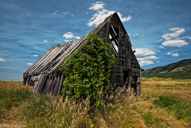 Leaning_Shack_of_Idaho