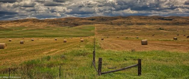 Montana_Fenceline
