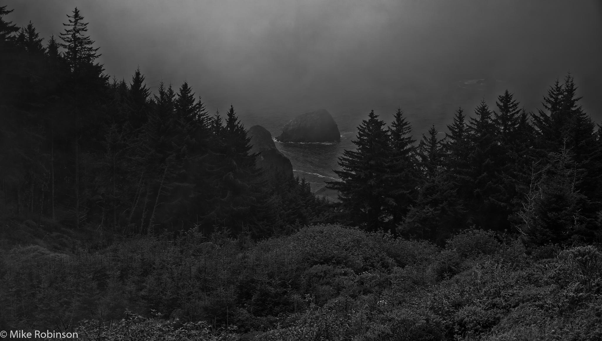 Oregon_Coast_Misty_Morning_BW