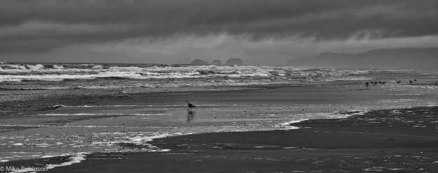 Oregon_Coast_Winter_Morning_BW