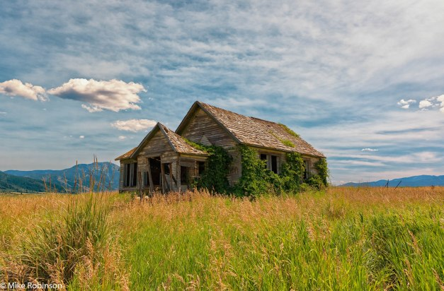 Idaho_Overgrown_Farmhouse