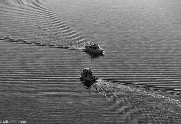 Ripples_and_Wakes_BW