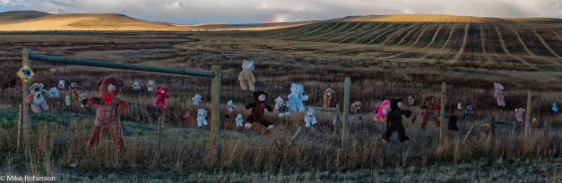 teddy_bear_fence