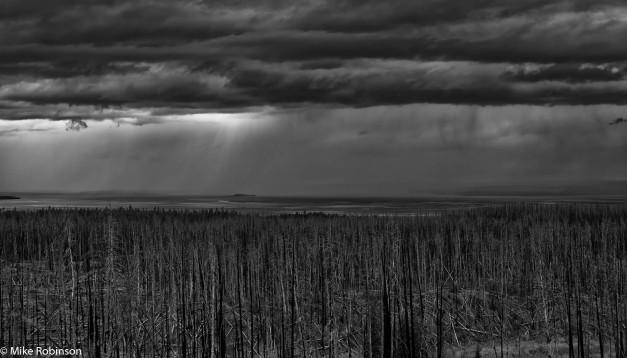 yellowstone_lake_rainy_afternoon_1_bw