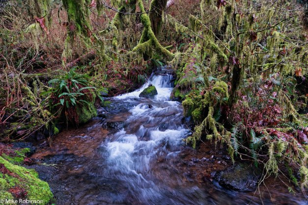 munson-falls-stream