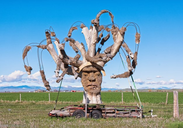 Montana Roadside Sculpture