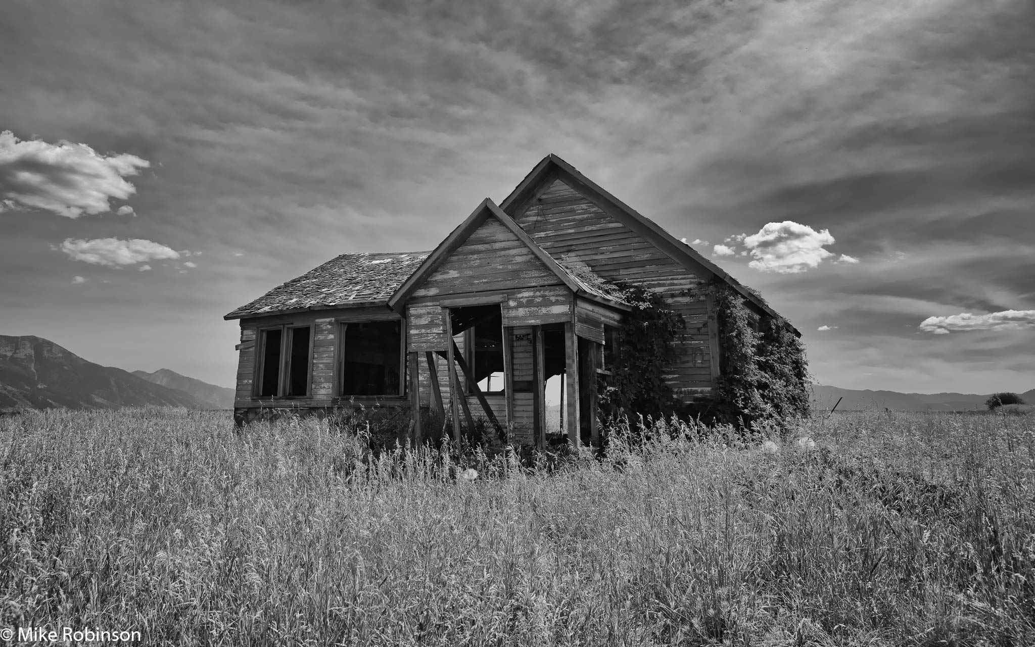 Idaho Overgrown Farmhouse 2.jpg
