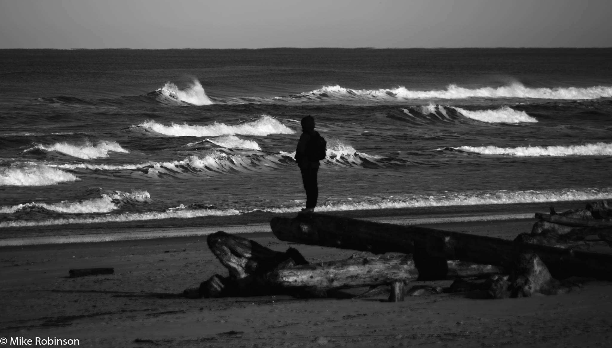 Wavewatcher.jpg