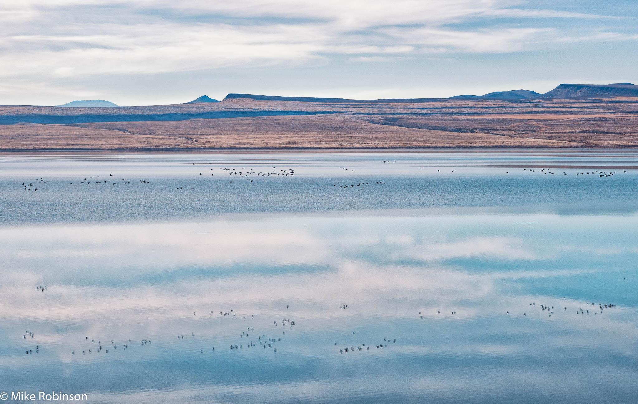 Lake Abert 3.jpg