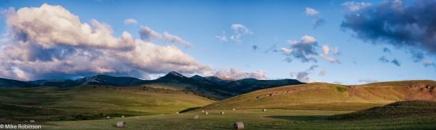 Montana Pastoral Morning.jpg
