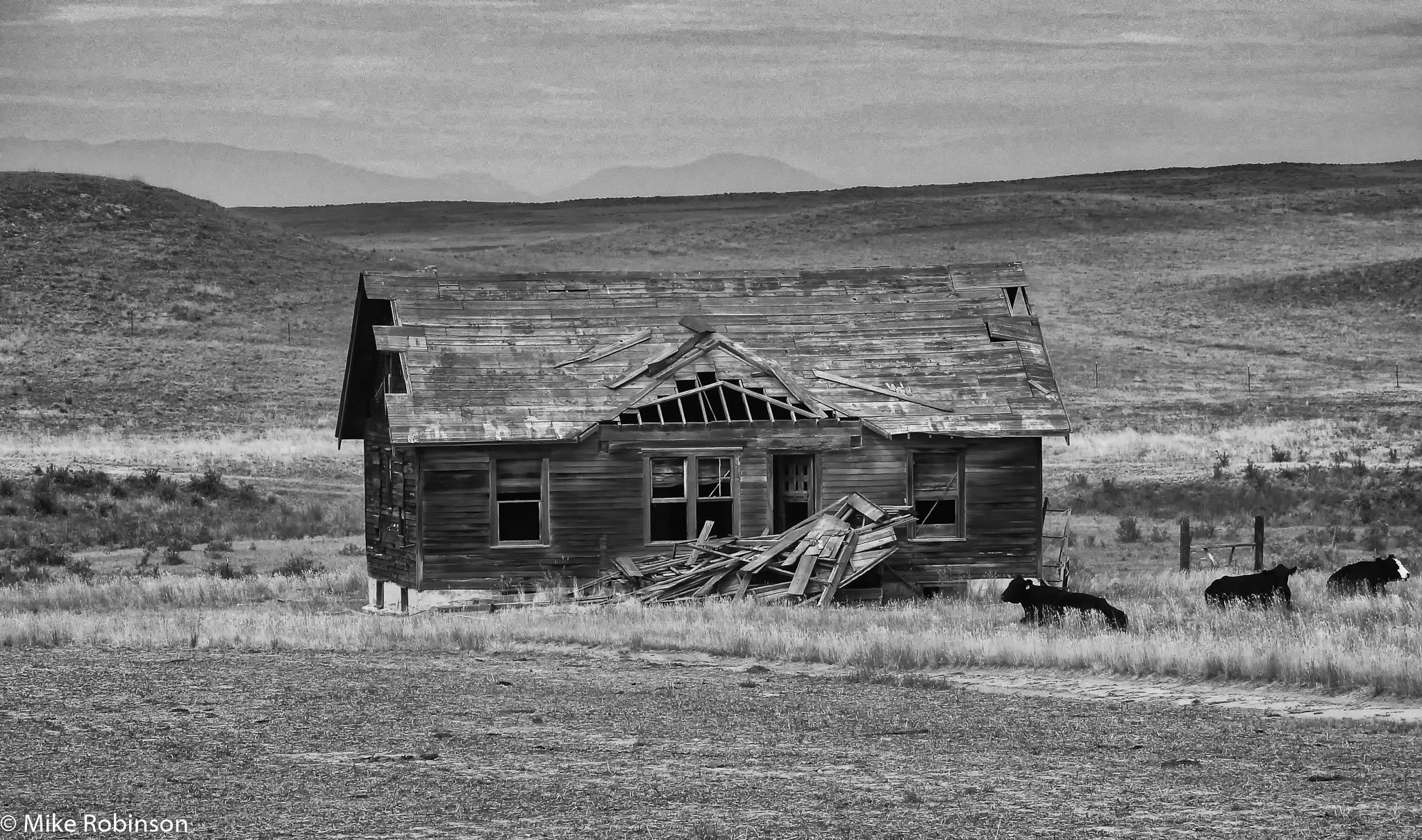 Montana Fixer-Upper 8.jpg