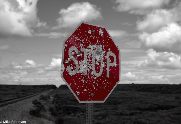Shotgun Stop Sign.jpg