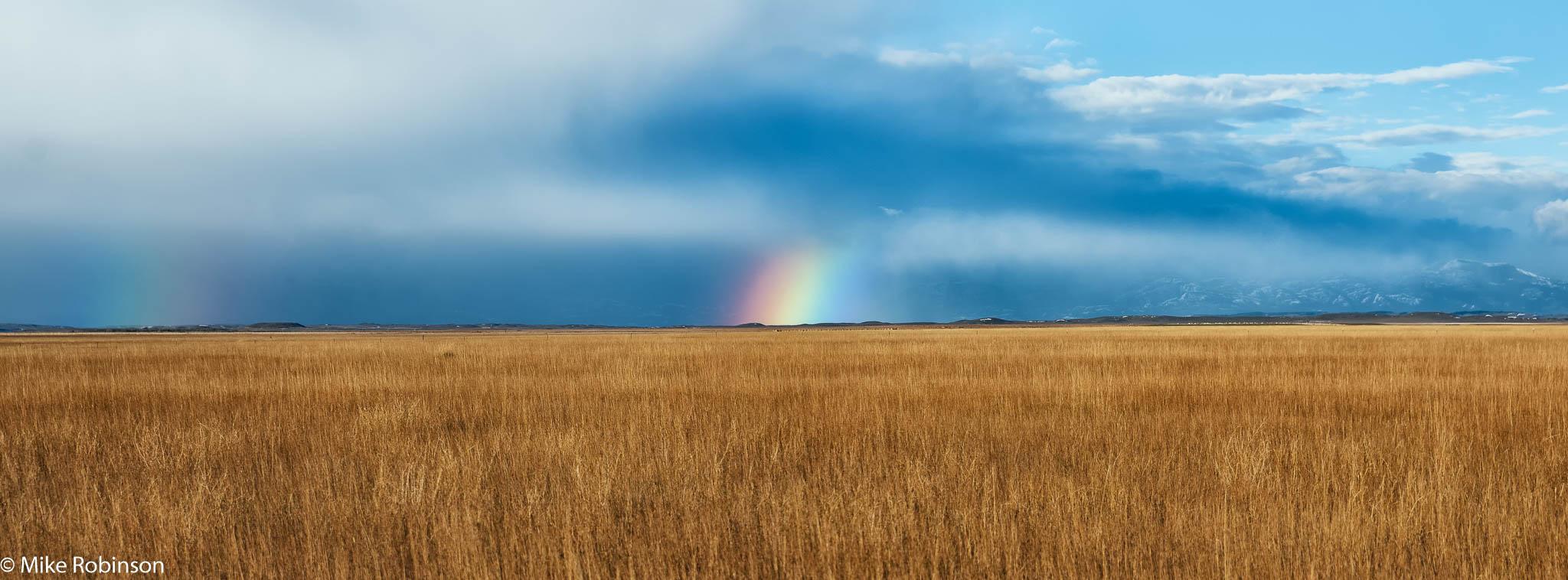Rainbow Field.jpg