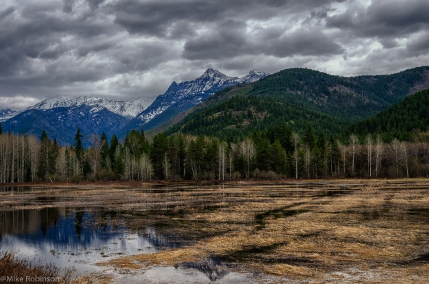 Montana Lakeside.jpg
