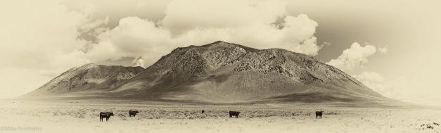 Big Southern Butte 8.jpg