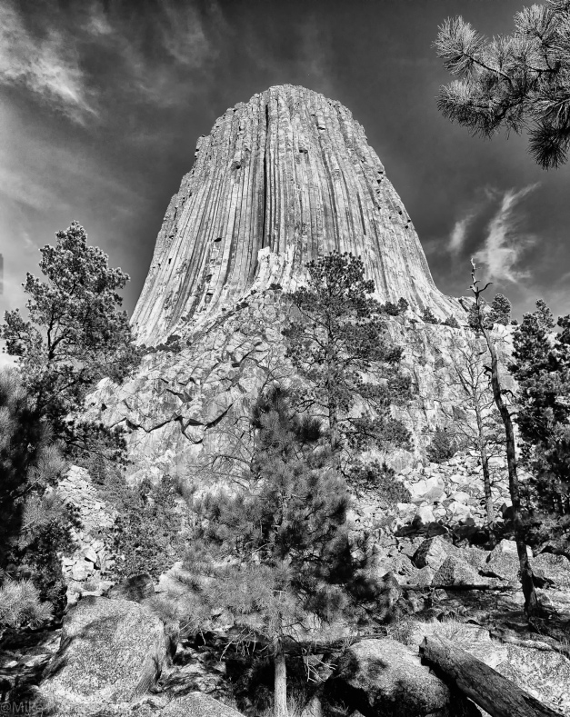 Devils Tower Base.jpg