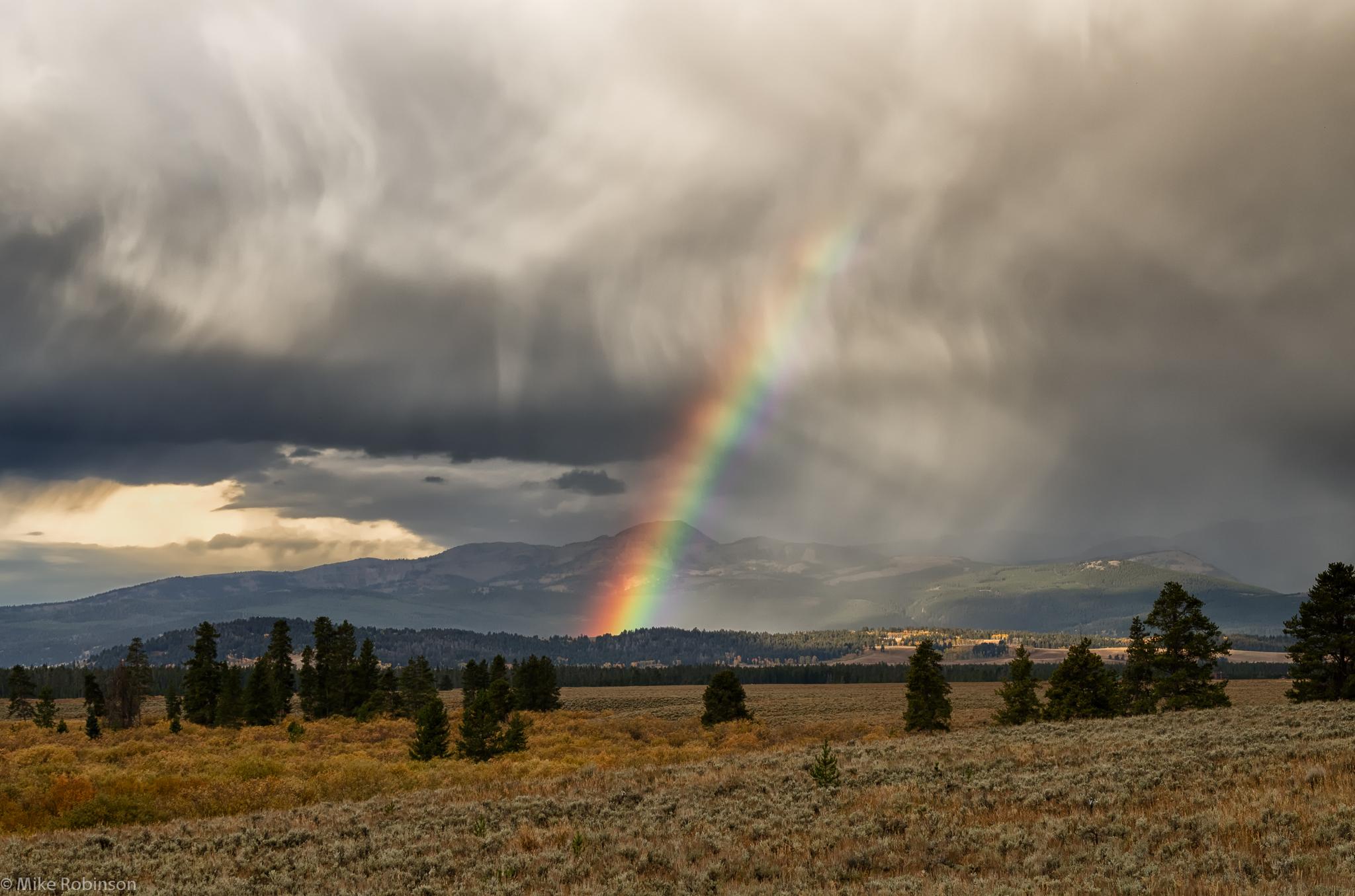 Wyoming_Rainbow_dxo.jpg