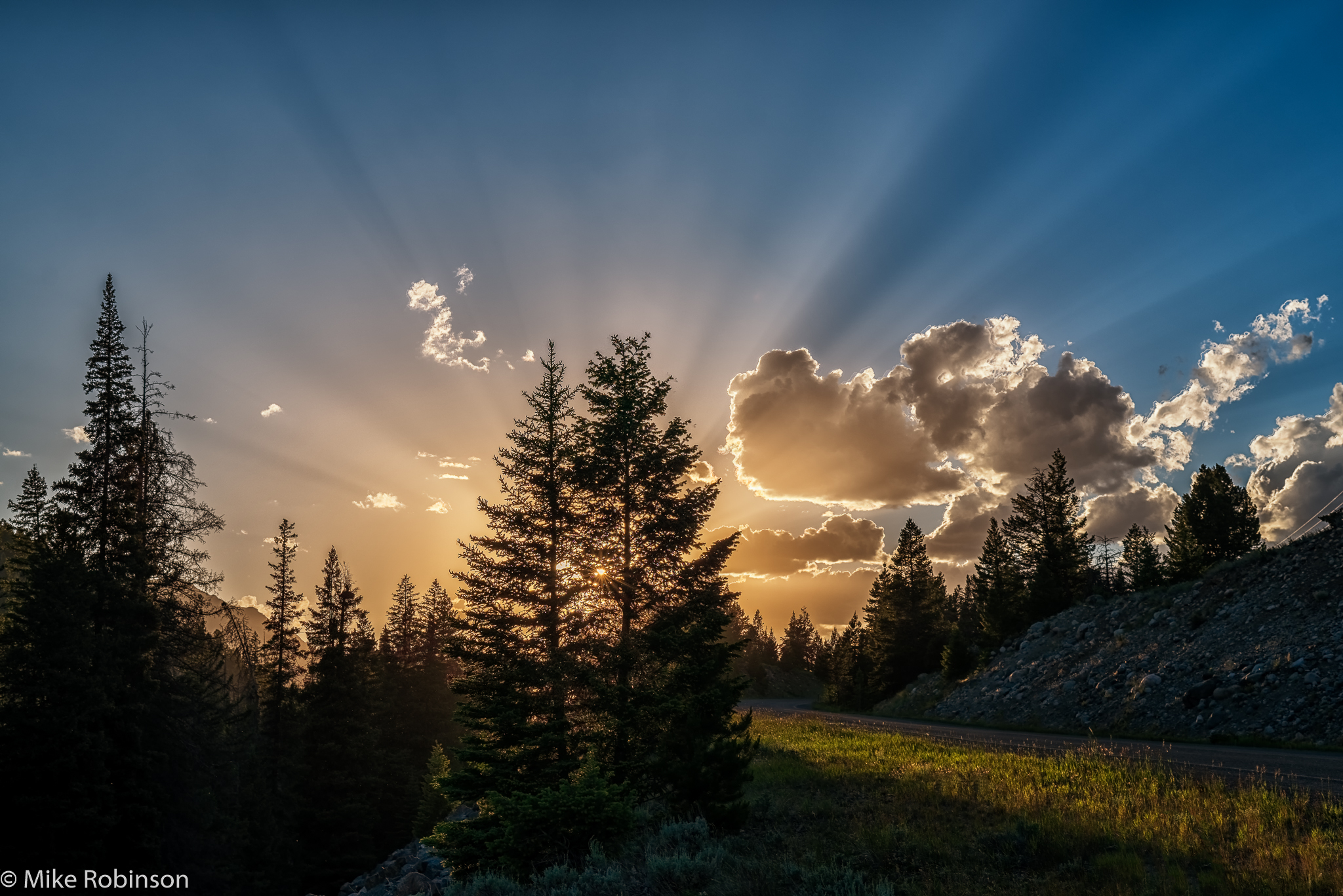 Yellowstone_Sunset_Trees.jpg